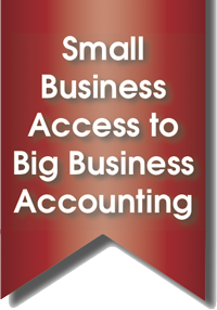 "text graphic that states ""Small Business Access to Big Business Accounting"""